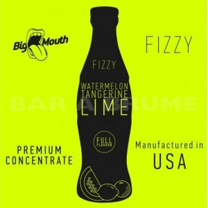 Watermelon Tangerine Lime Fizzy 10ml - Concentré Big Mouth